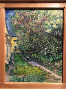 The garden of the Asylum at Saint-Remy - 1889 Vincent Van Gogh